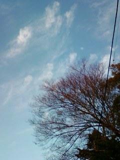 空1125.jpg