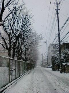 雪道20130114.jpg